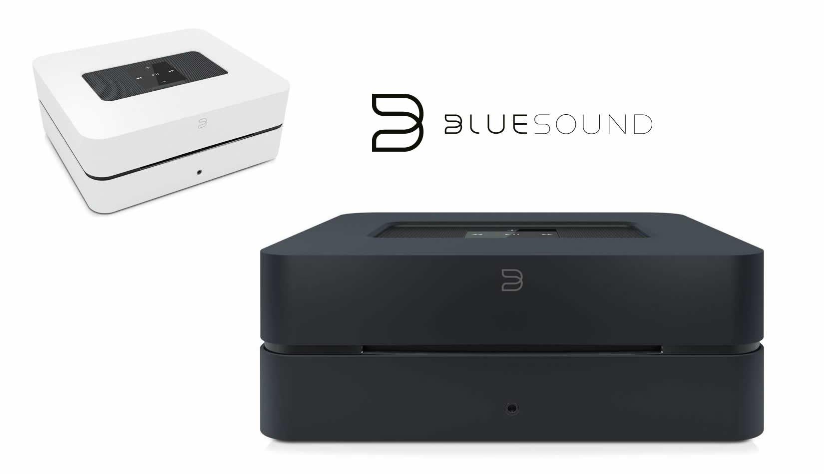Den Bluesound Vault 2 Streamingserver mit Client und Ripp-Funktion kauft man beim AkustikTune Hifi Studio